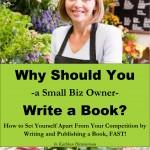 Small Biz Owners Marketing Tool